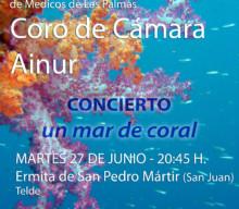 "La capilla de San Pedro Mártir acoge un ""mar de coral"""
